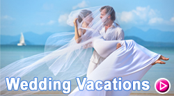 Wedding Vacations Banner