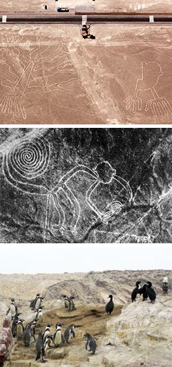 Two Nights Nasca Lines Tour