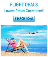 Flight Deals Banner